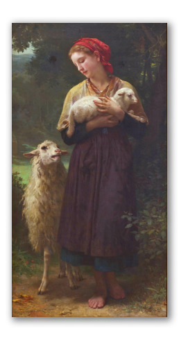 The Newborn Lamb