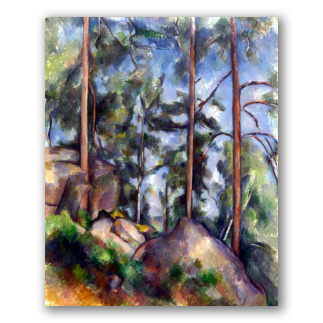 Pines and Rocks